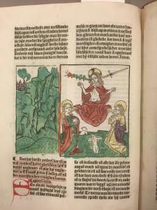 De prent van het laatste oordeel uit de editie van Leeuw uit 1487